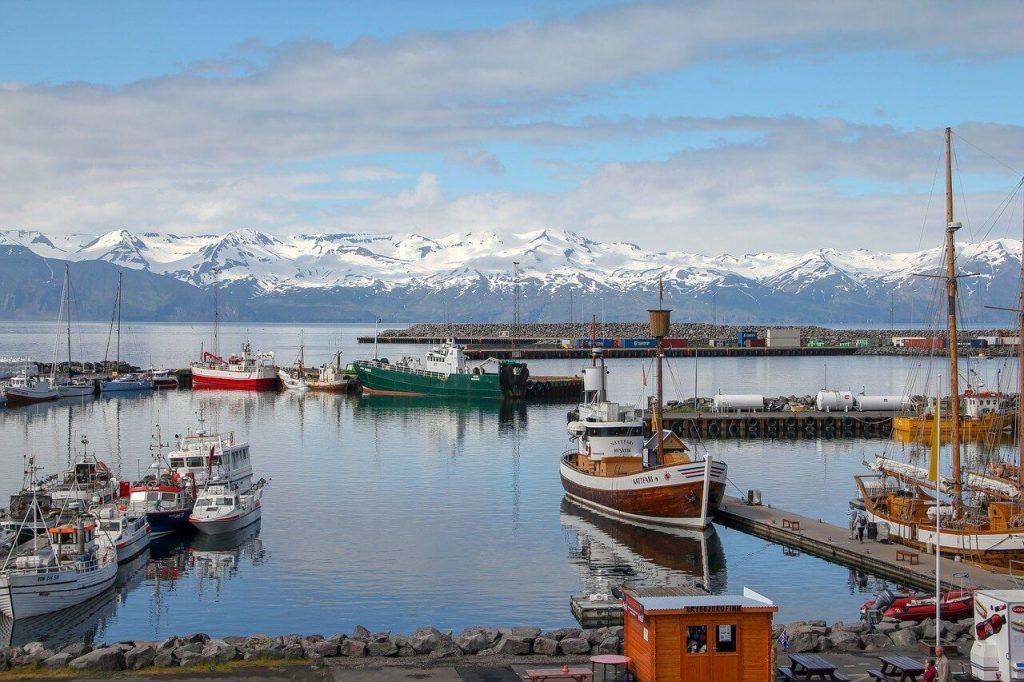 Iceland Expat Guide