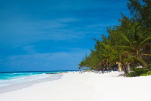 Barbados 12 month visa program